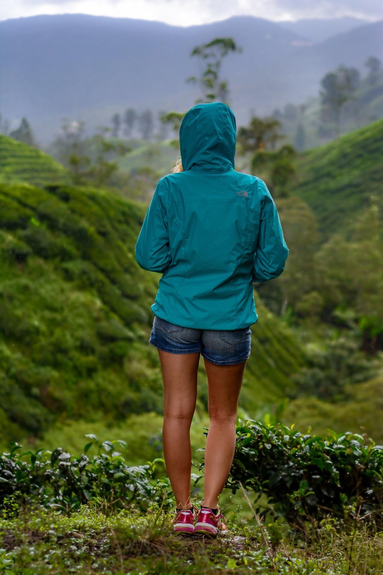 Čajové plantáže - Malajsie cestopis, Martin Šístek