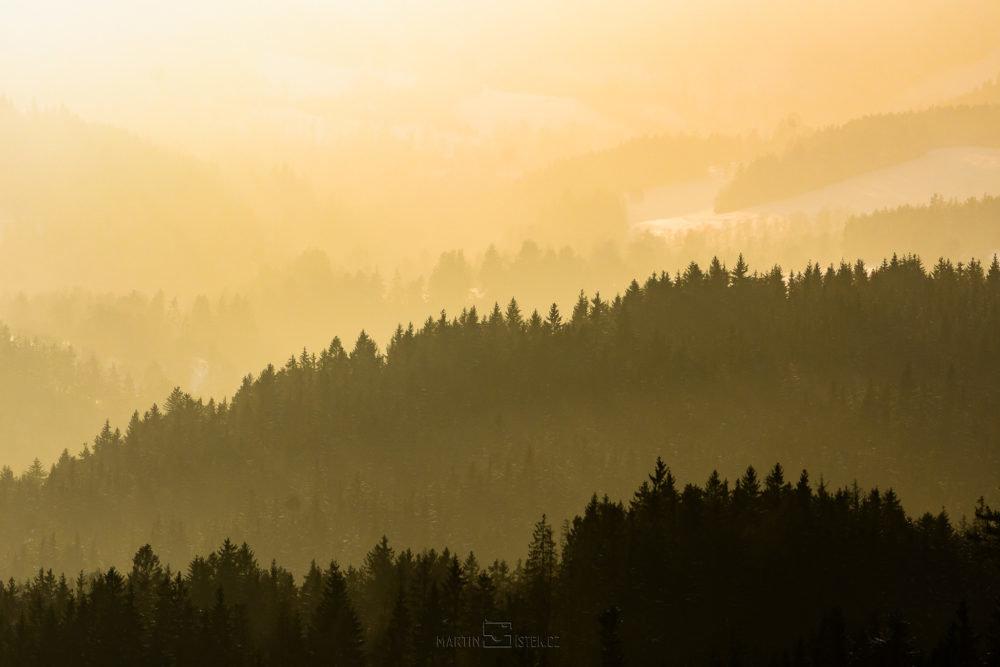 Siluety stromů, západ slunce Kašperské hory